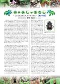 森林のたよりアーカイブ 山のおじゃまむし(H24.1~H25.12)