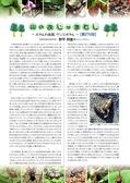 森林のたよりアーカイブ 山のおじゃまむし(H26.1~H27.12)